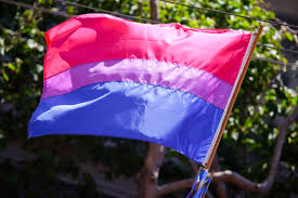 BISEXUALITY DAY